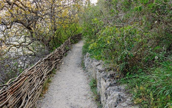Голицынская тропа фото