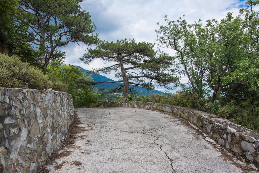 массандровский парк крыму