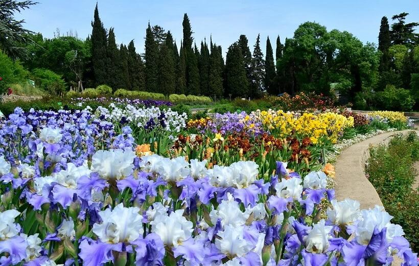никитинский ботанический сад в крыму