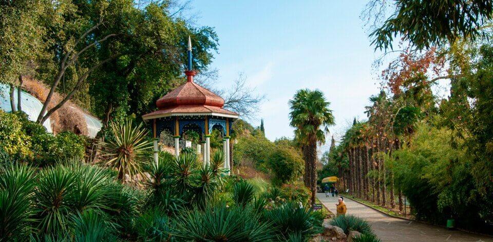 ялтинский ботанический сад