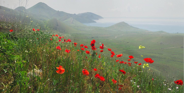 майские праздники в Крыму