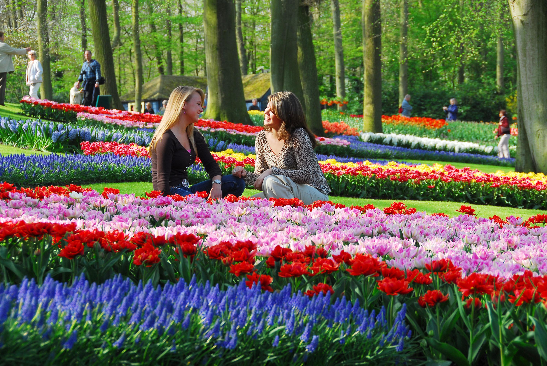 Никитский ботанический сад 2016