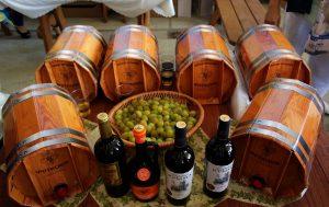 фестиваль Золотая гроздь винограда 2016