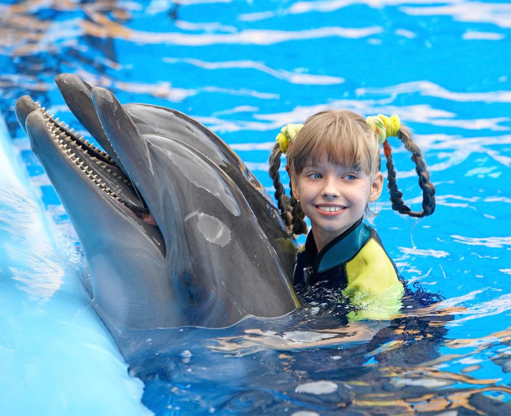 дельфинарии в севастополе