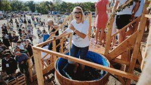 фестиваль молодого вина в балаклаве 2017