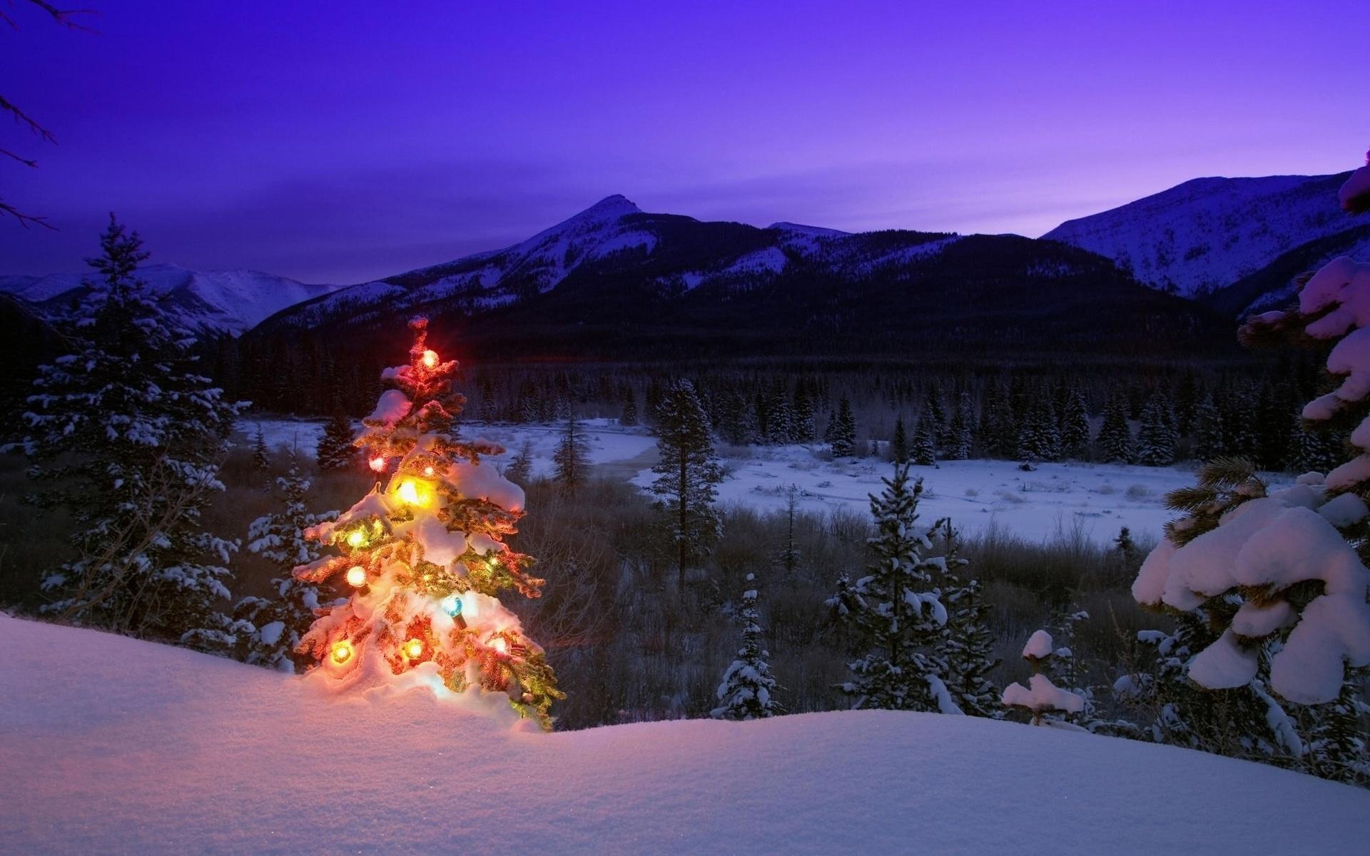 Шале на новый год в горах сколько стоит проживание в канаде